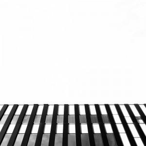 city zebra | arch [art]
